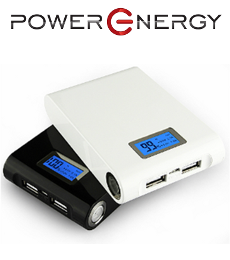 PowerEnergy PE8000P
